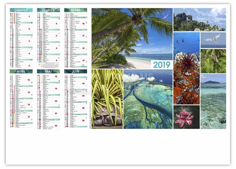 calendrier-bancaire-publicitaire-palmier-recto-2019