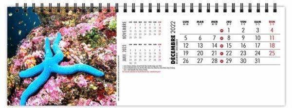 calendrier-publicitaire-chevalet-maxi-de-table-13-feuilles-plongee-decembre-2022